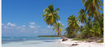 Доминиканска република Плая Баваро - Май – Октомври 2018