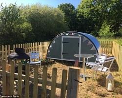 Във Великобритания предлагат на туристи нощувка в кочина за 45 лири